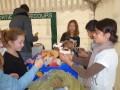 Les enfants du CEE en pleine collecte de jouets ©CCE Buxerolles